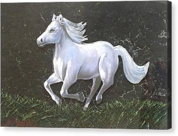 The Galloping Horse- Canvas Print by Rejeena Niaz