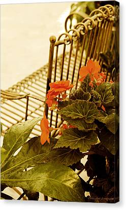 The Garden Bench Canvas Print by MaryJane Armstrong