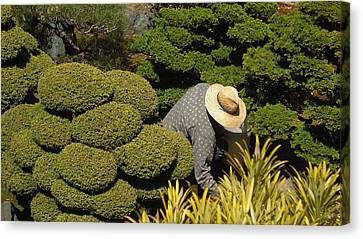 The Gardener Canvas Print by Richard Reeve