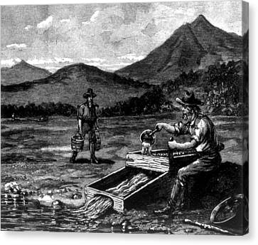 The Gold Rush, Prospector Using Canvas Print by Everett