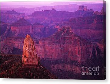 The Grand Canyon North Rim Canvas Print by Bob Christopher