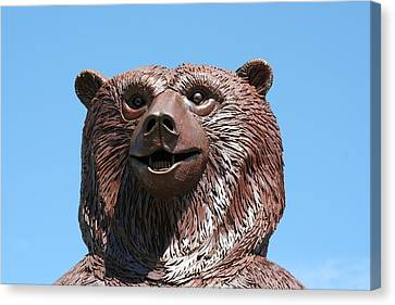 The Great Bear Canvas Print by Alan Derber