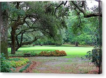 The Great Lawn Canvas Print by Laurinda Bowling