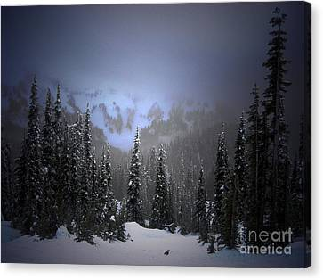 The Great Mystery  Canvas Print by C E Dyer