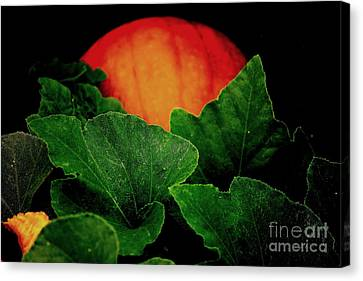 The Great Pumpkin Canvas Print