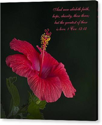 The Greatest Of These Is Love Canvas Print by Kathy Clark