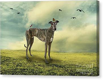 The Greyhound Canvas Print by Ethiriel  Photography
