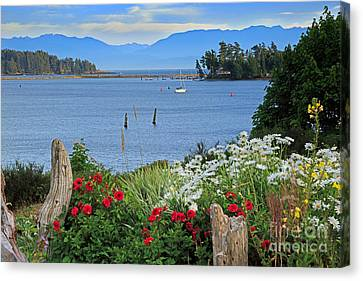 The Harbor At Sooke Canvas Print by Louise Heusinkveld