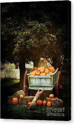 The Harvest Canvas Print by Stephanie Frey