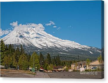 The Heart Of Mount Shasta Canvas Print by Carol Ailles