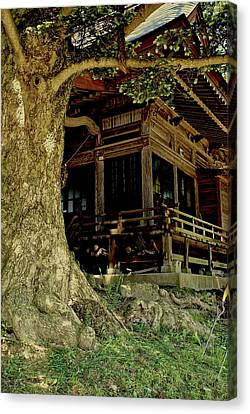 Canvas Print featuring the photograph The Hidden Shrine 2 by Tim Ernst