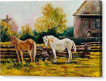The Horse Ranch Eastern Townships Quebec Canvas Print by Carole Spandau
