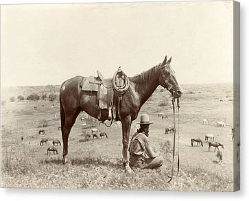 The Horse Wrangler, Photograph By Erwin Canvas Print by Everett