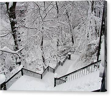 Wissahickon Canvas Print - The Hundred Steps In The Snow by Bill Cannon