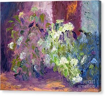 The Hydrangeas Canvas Print by Patricia Huff