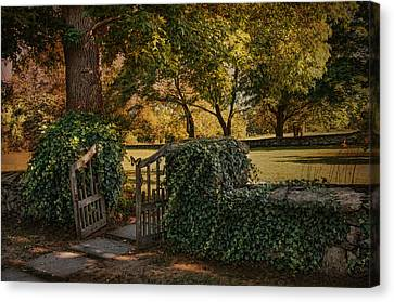 The Ivy Gate Canvas Print by Robin-Lee Vieira