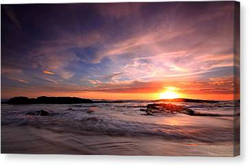 The Last Rays Canvas Print by Paul Svensen
