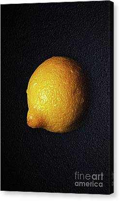 The Lazy Lemon Canvas Print by Andee Design