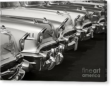 The Lineup Canvas Print by Dennis Hedberg