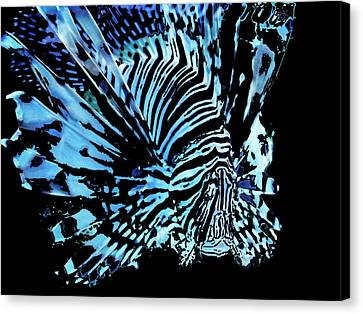The Lionfish 2 Canvas Print by Robin Hewitt