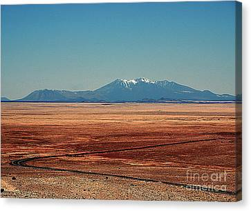 The Long Road To The Meteor Crater In Az Canvas Print by Susanne Van Hulst