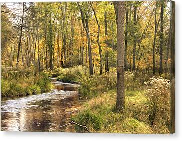 The Lost Creek Canvas Print by Cindy Rubin