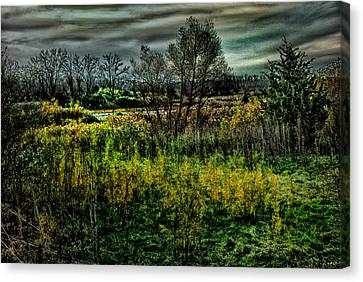 Canvas Print featuring the digital art The Marsh by Kimberleigh Ladd
