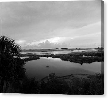 The Marshes Of St. Marks Canvas Print by Judy Wanamaker