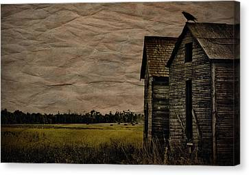 The Messenger  Canvas Print by Jerry Cordeiro