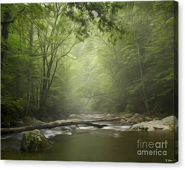 The Middle Prong River In Fog Canvas Print by Smokey Mountain  Art