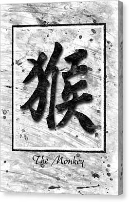 The Monkey  Canvas Print by Mauro Celotti