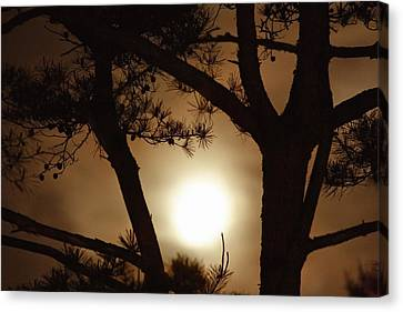 The Moon Rises Above Nanko Lake Canvas Print by Michael S. Yamashita