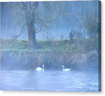 The Mystical River Canvas Print