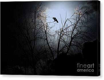 The Night The Raven Appeared In My Dream . 7d12631 Canvas Print