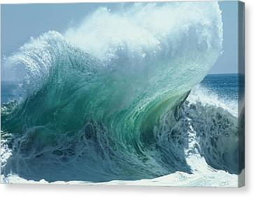 The Ocean's Might Personified Canvas Print