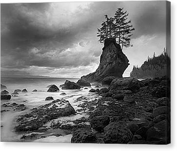 The Old Man Of The Sea - Strait Of Juan De Fuca Canvas Print by Nathan Mccreery