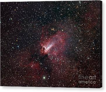 The Omega Nebula Canvas Print by Filipe Alves