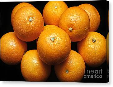 The Oranges Canvas Print by Andee Design