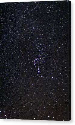 The Orion Constellation Canvas Print by Laurent Laveder