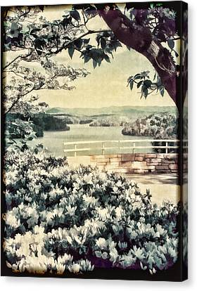 Dogwood Lake Canvas Print - The Overlook by Darren Fisher
