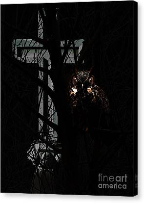 The Owl And The Cross Canvas Print by Wingsdomain Art and Photography
