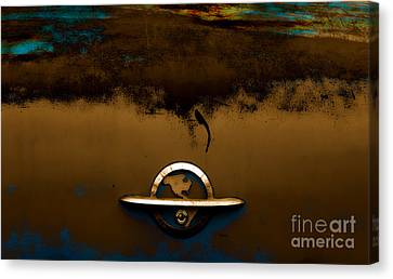 The Paint Of Corrosion  Canvas Print by Steven  Digman