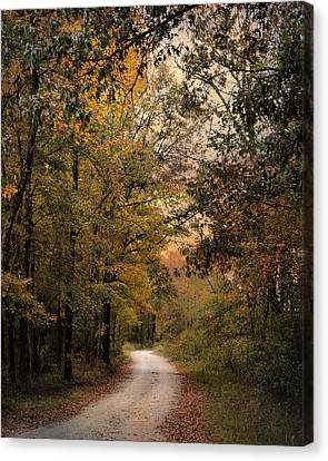 The Path Less Traveled 2 Canvas Print by Jai Johnson