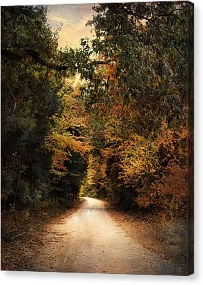 The Path Less Traveled Canvas Print by Jai Johnson
