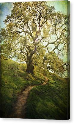 The Path To Brighter Days Canvas Print by Laurie Search