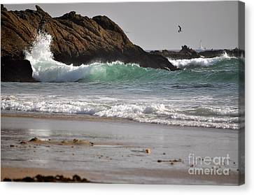 Canvas Print featuring the photograph The Point by Johanne Peale