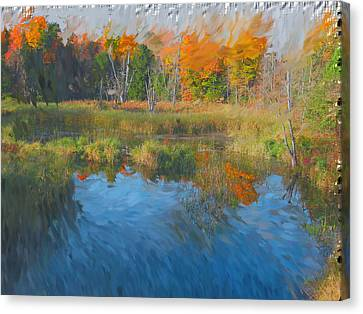 The Pond Next Door Canvas Print by Mario Carini
