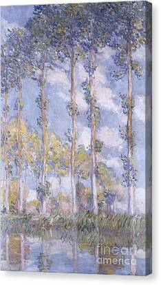 The Poplars Canvas Print by Claude Monet