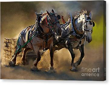 The Power Of Two Canvas Print by Davandra Cribbie