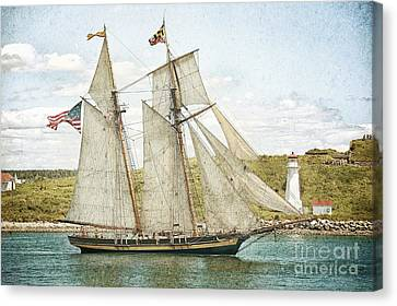 The Pride Of Baltimore In Halifax Canvas Print